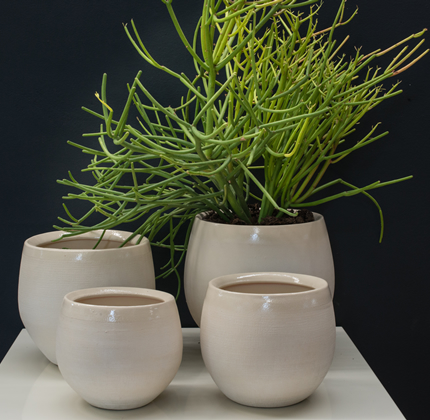 Garden Products, Plant Pots, plant furniture, indoor plants, garden products, indigenous plants, michells, wholesale nursery